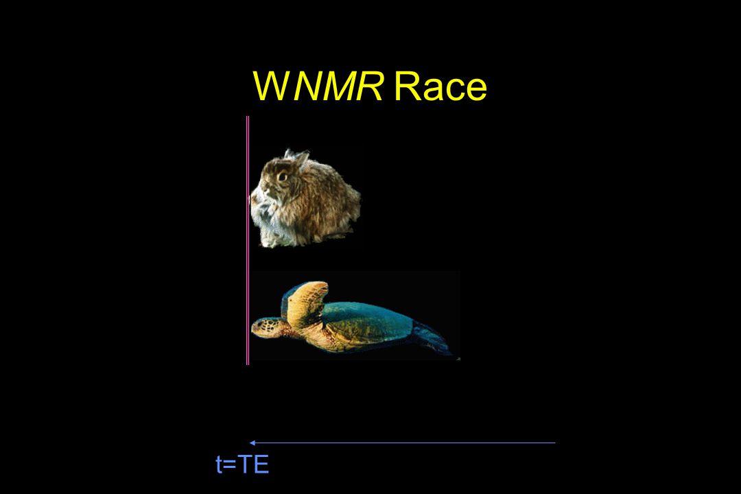 t=TE WNMR Race