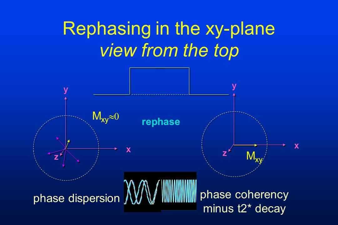 y x z M xy phase coherency minus t2* decay Rephasing in the xy-plane view from the top rephase y x z M xy  phase dispersion
