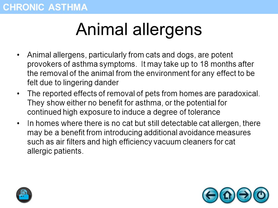 Animal allergens Animal allergens, particularly from cats and dogs, are potent provokers of asthma symptoms.