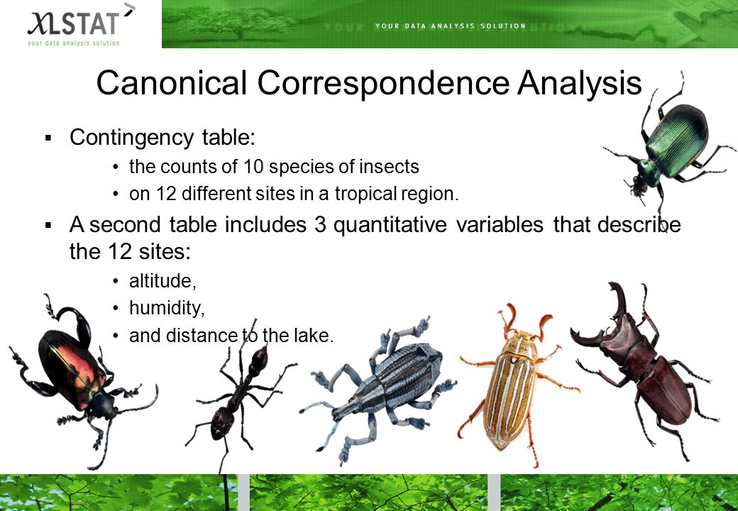 Canonical Correspondence Analysis  Contingency table: the counts of 10 species of insects on 12 different sites in a tropical region.