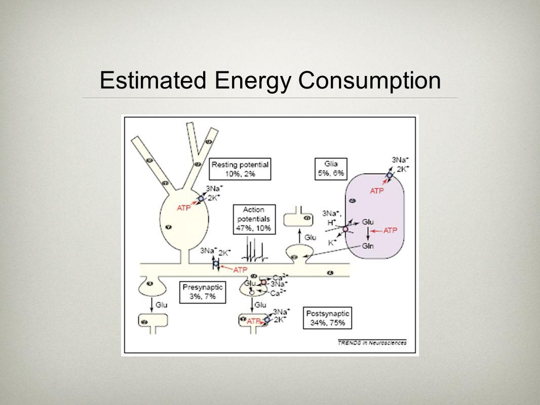 Estimated Energy Consumption