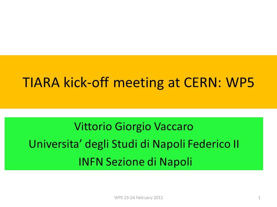 TIARA kick-off meeting at CERN: WP5 Vittorio Giorgio Vaccaro Universita' degli Studi di Napoli Federico II INFN Sezione di Napoli WP5 23-24 February 2