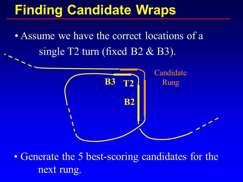 Finding Candidate Wraps Assume we have the correct locations of a single T2 turn (fixed B2 & B3).