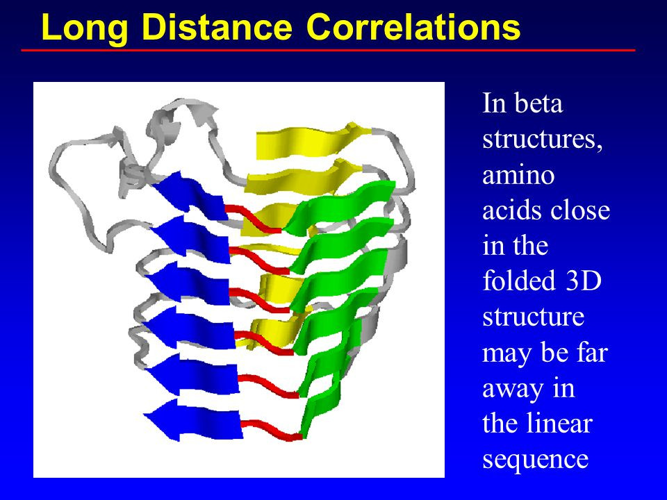 Long Distance Correlations In beta structures, amino acids close in the folded 3D structure may be far away in the linear sequence