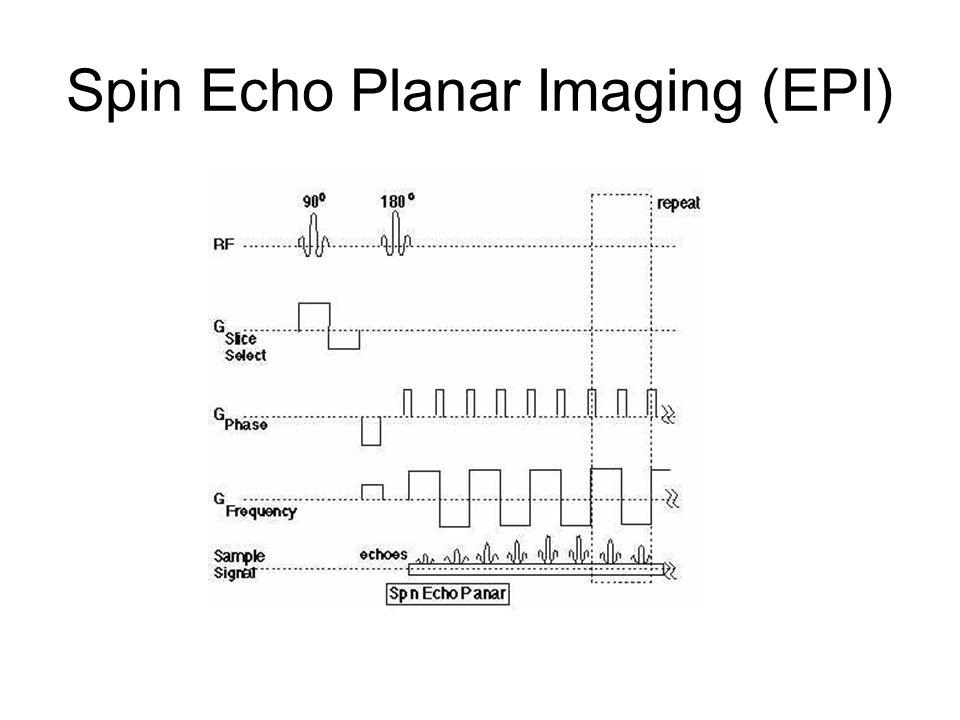 Spin Echo Planar Imaging (EPI)