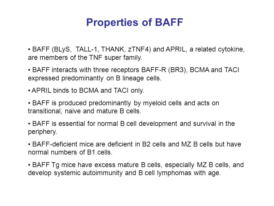 Properties of BAFF BAFF (BLyS, TALL-1, THANK, zTNF4) and APRIL, a related cytokine, are members of the TNF super family. BAFF interacts with three rec