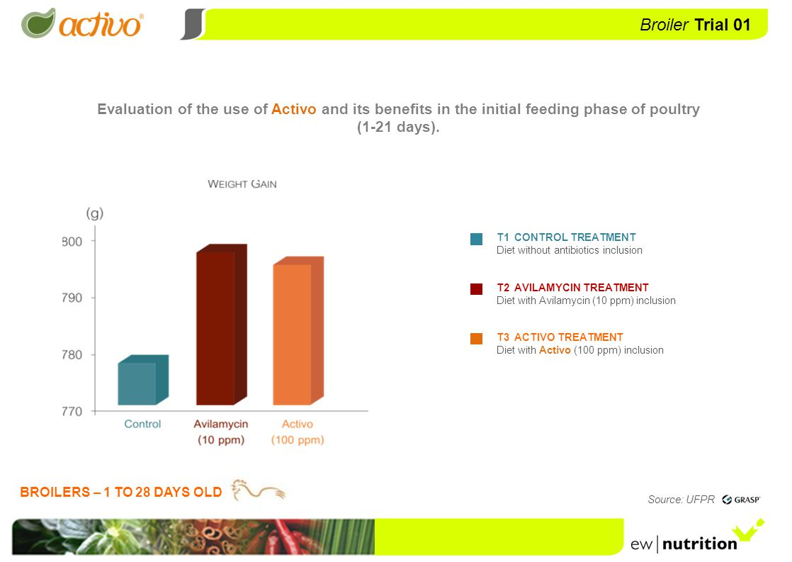 Evaluation of the use of Activo and its benefits in the initial feeding phase of poultry (1-21 days).