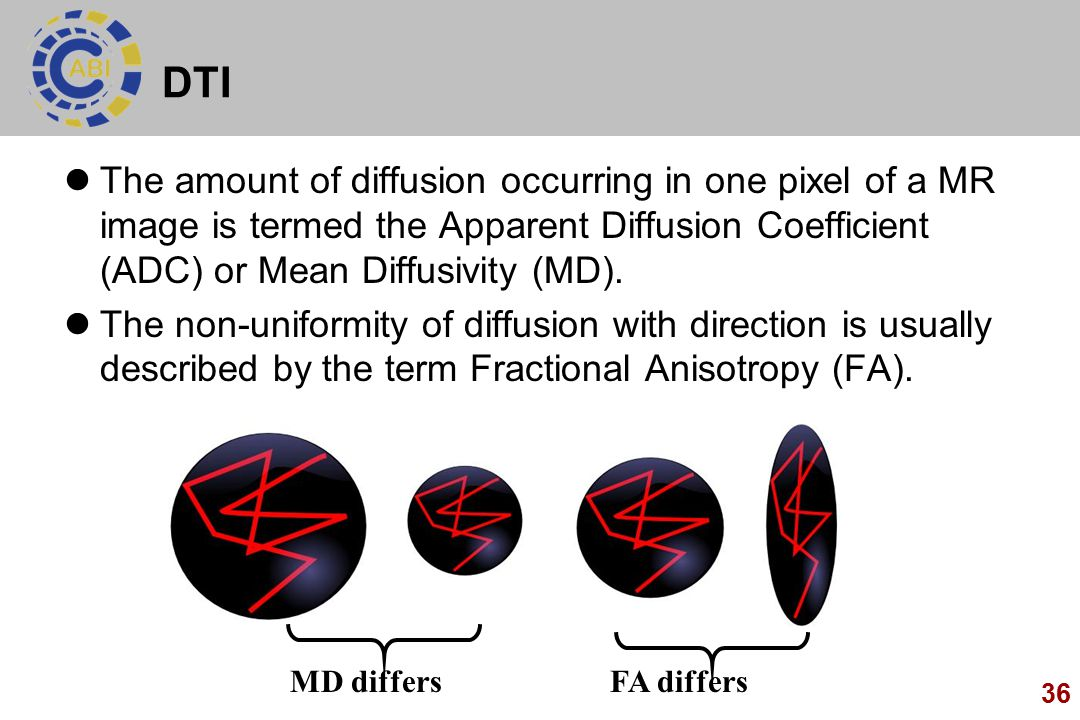 36 DTI The amount of diffusion occurring in one pixel of a MR image is termed the Apparent Diffusion Coefficient (ADC) or Mean Diffusivity (MD).