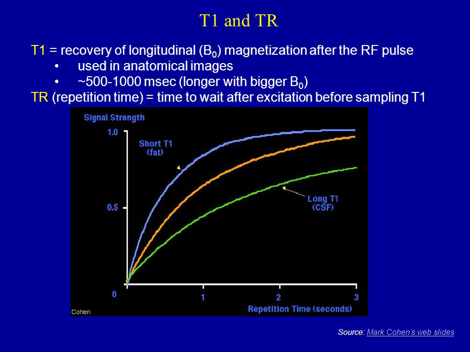 T1 and TR Source: Mark Cohen's web slidesMark Cohen's web slides T1 = recovery of longitudinal (B 0 ) magnetization after the RF pulse used in anatomi