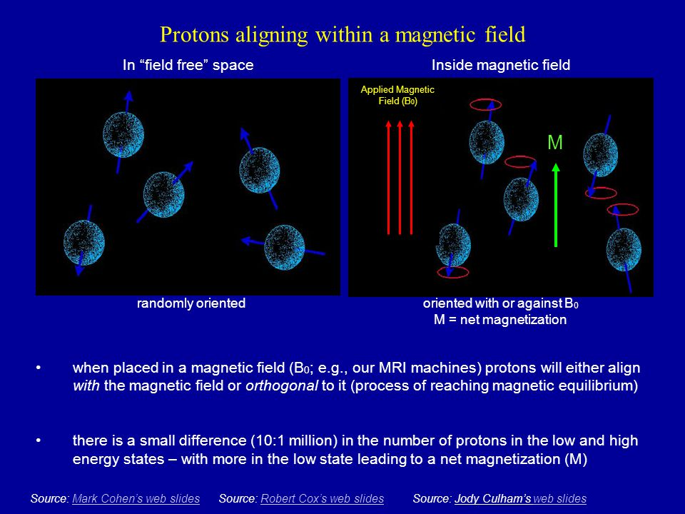 """Protons aligning within a magnetic field In """"field free"""" space randomly oriented Source: Mark Cohen's web slidesMark Cohen's web slidesSource: Robert"""
