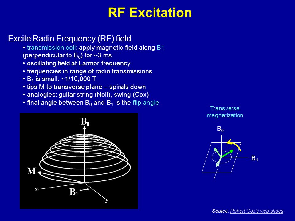 RF Excitation Excite Radio Frequency (RF) field transmission coil: apply magnetic field along B1 (perpendicular to B 0 ) for ~3 ms oscillating field a