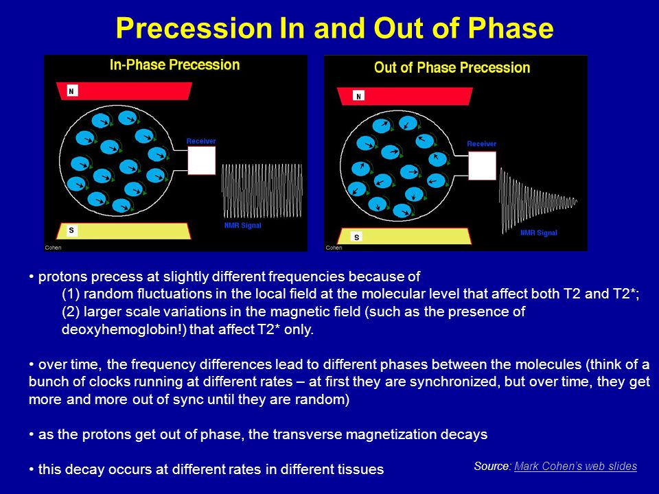 Precession In and Out of Phase Source: Mark Cohen's web slidesMark Cohen's web slides protons precess at slightly different frequencies because of (1)