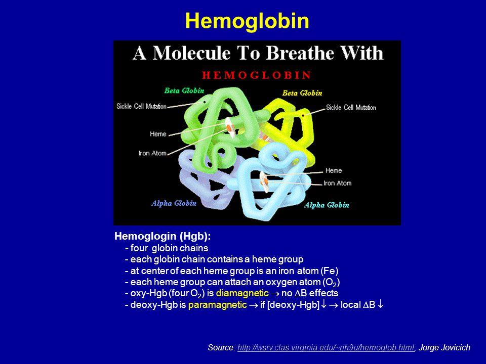 Hemoglobin Source: http://wsrv.clas.virginia.edu/~rjh9u/hemoglob.html, Jorge Jovicichhttp://wsrv.clas.virginia.edu/~rjh9u/hemoglob.html Hemoglogin (Hg