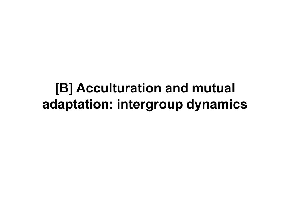 [B] Acculturation and mutual adaptation: intergroup dynamics