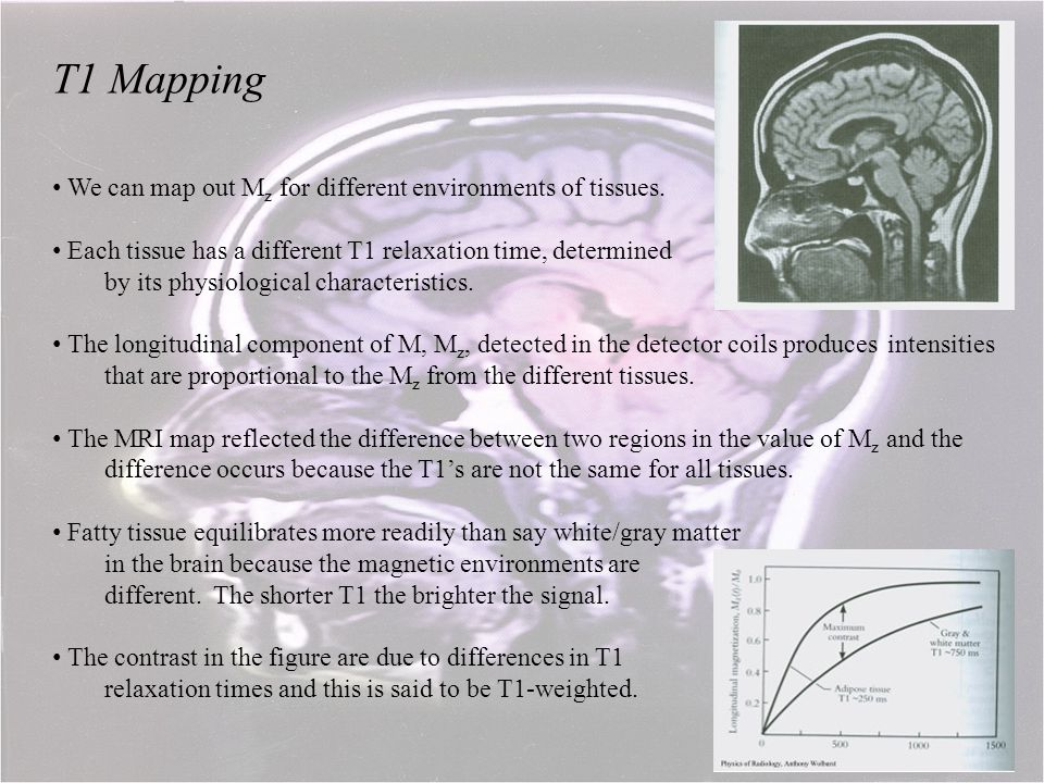 T1 Mapping We can map out M z for different environments of tissues. Each tissue has a different T1 relaxation time, determined by its physiological c