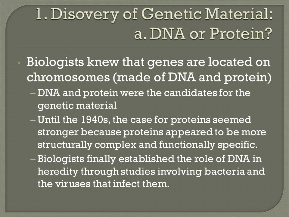Biologists knew that genes are located on chromosomes (made of DNA and protein) – DNA and protein were the candidates for the genetic material – Until