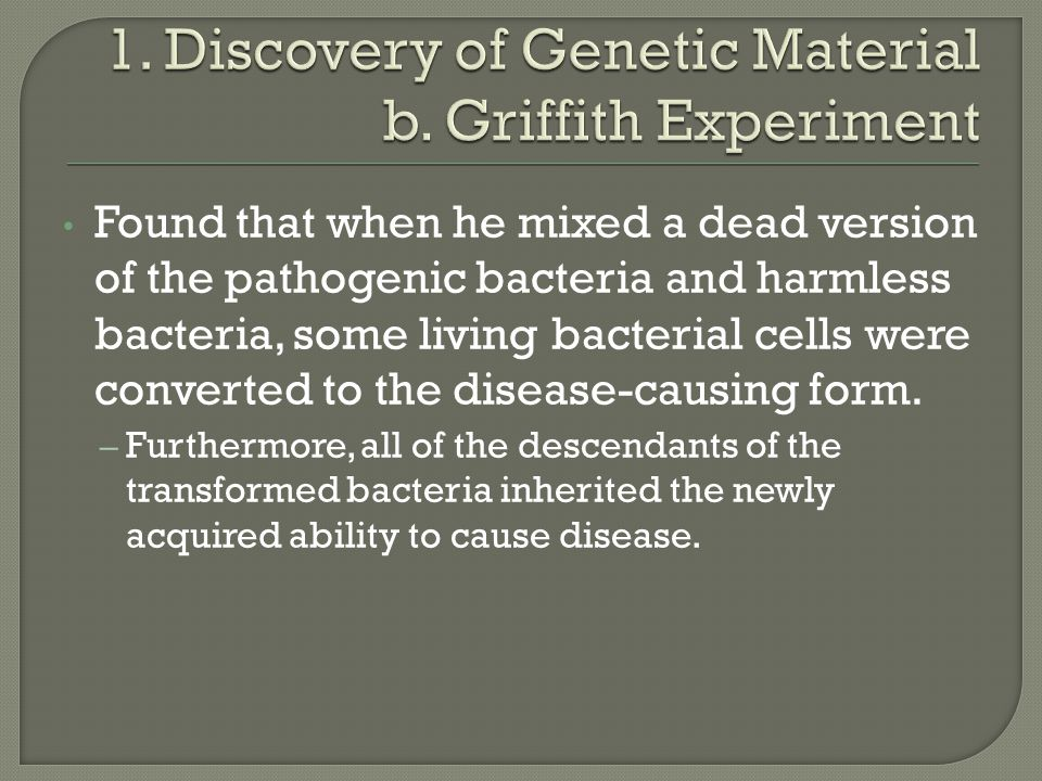 Found that when he mixed a dead version of the pathogenic bacteria and harmless bacteria, some living bacterial cells were converted to the disease-causing form.