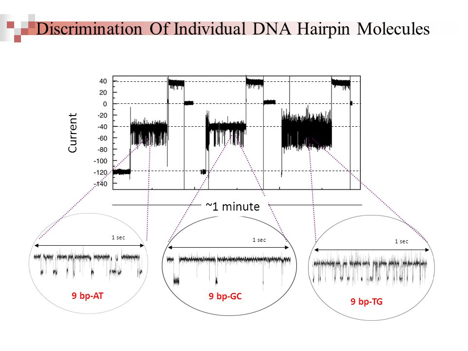 1 sec 9 bp-GC 1 sec 9 bp-TG 1 sec 9 bp-AT ~1 minute Current Discrimination Of Individual DNA Hairpin Molecules
