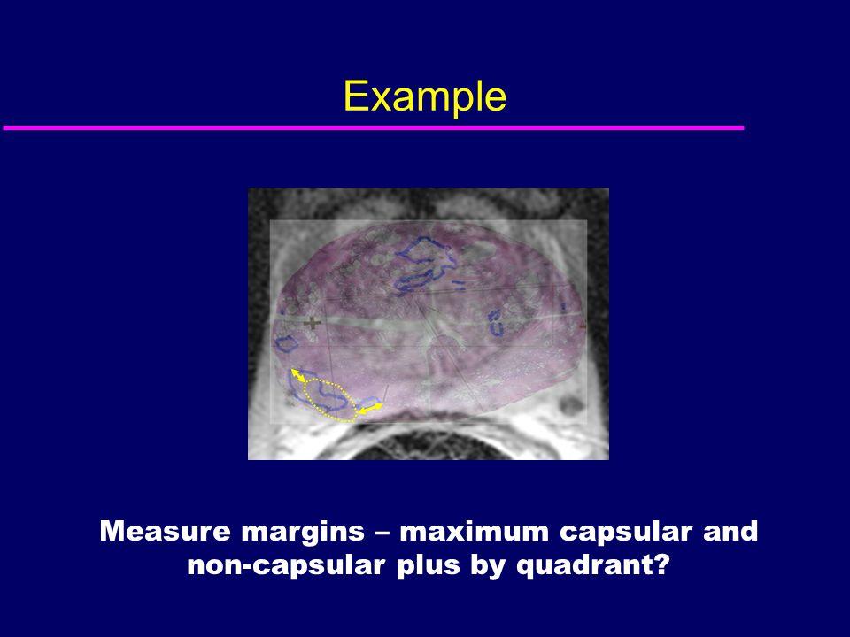 Example Measure margins – maximum capsular and non-capsular plus by quadrant?