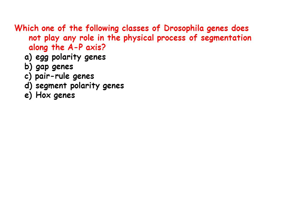 Which one of the following classes of Drosophila genes does not play any role in the physical process of segmentation along the A-P axis.