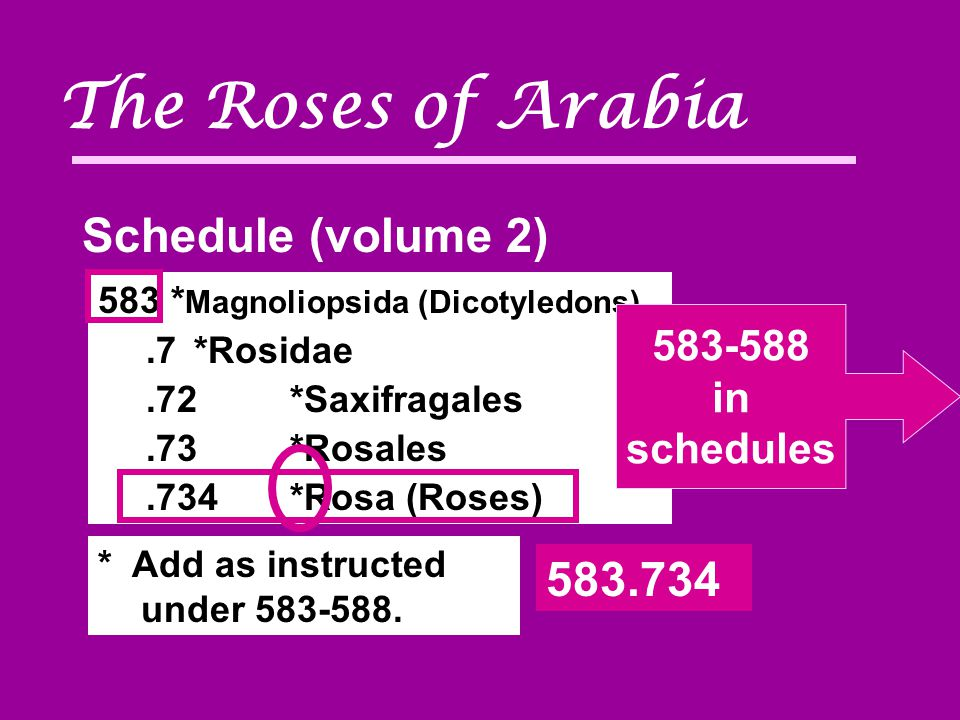 The Roses of Arabia 583 * Magnoliopsida (Dicotyledons).7*Rosidae.72*Saxifragales.73*Rosales.734*Rosa (Roses) Schedule (volume 2) 583-588 in schedules 583.734 * Add as instructed under 583-588.