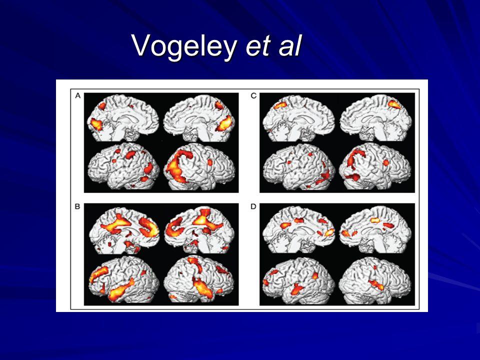 Vogeley et al