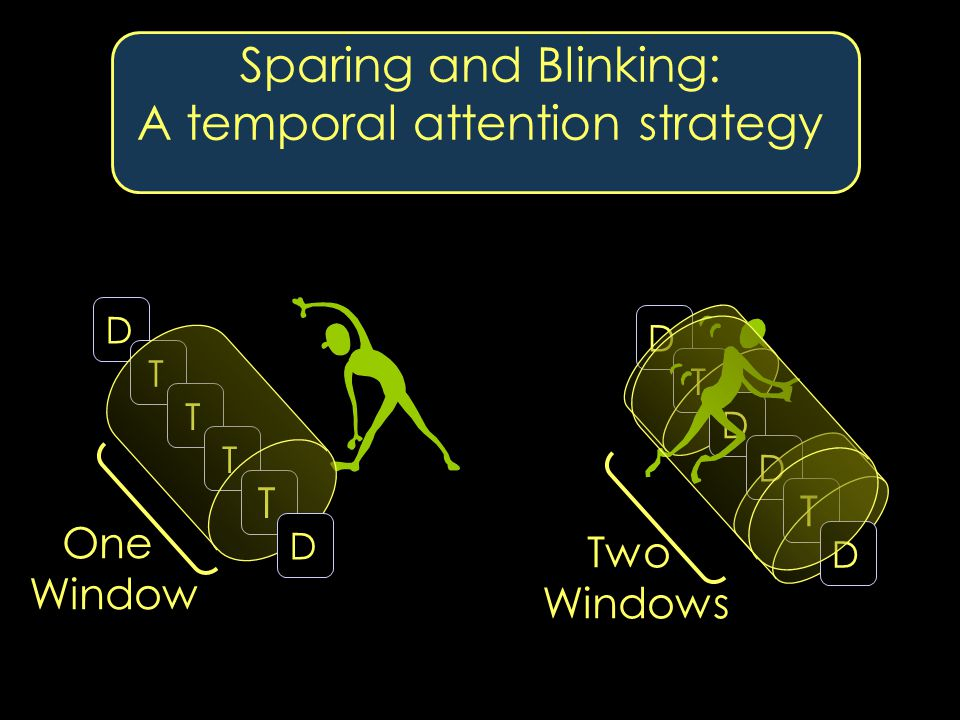 Sparing and Blinking: A temporal attention strategy DTTT T D T One Window Two Windows DDD T D