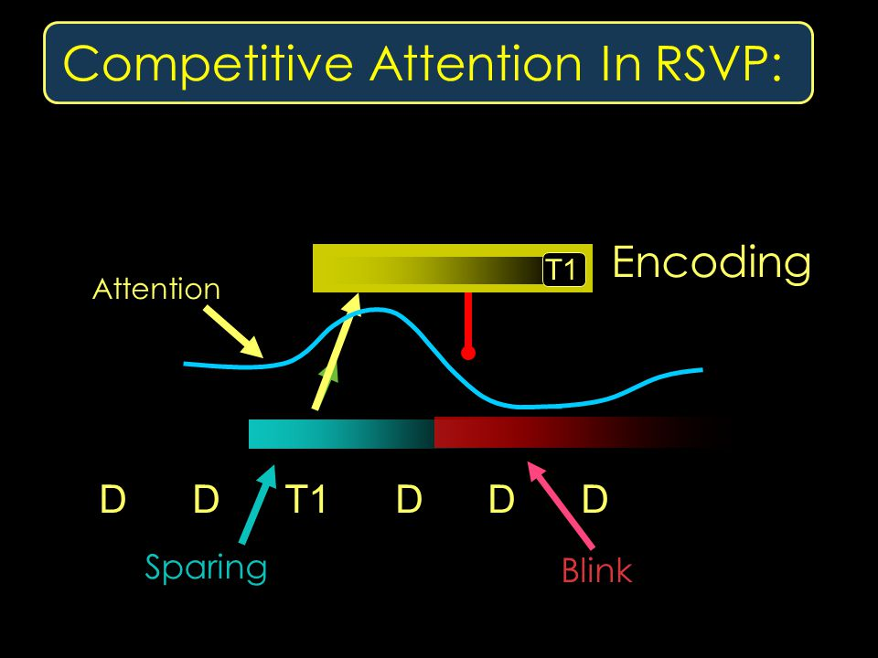 Competitive Attention In RSVP: D D T1 D D D Sparing Blink Attention T1 Encoding