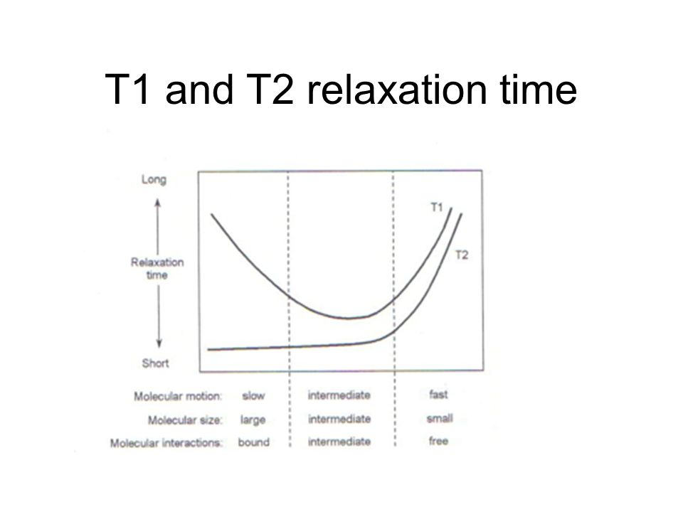 T1 and T2 relaxation time