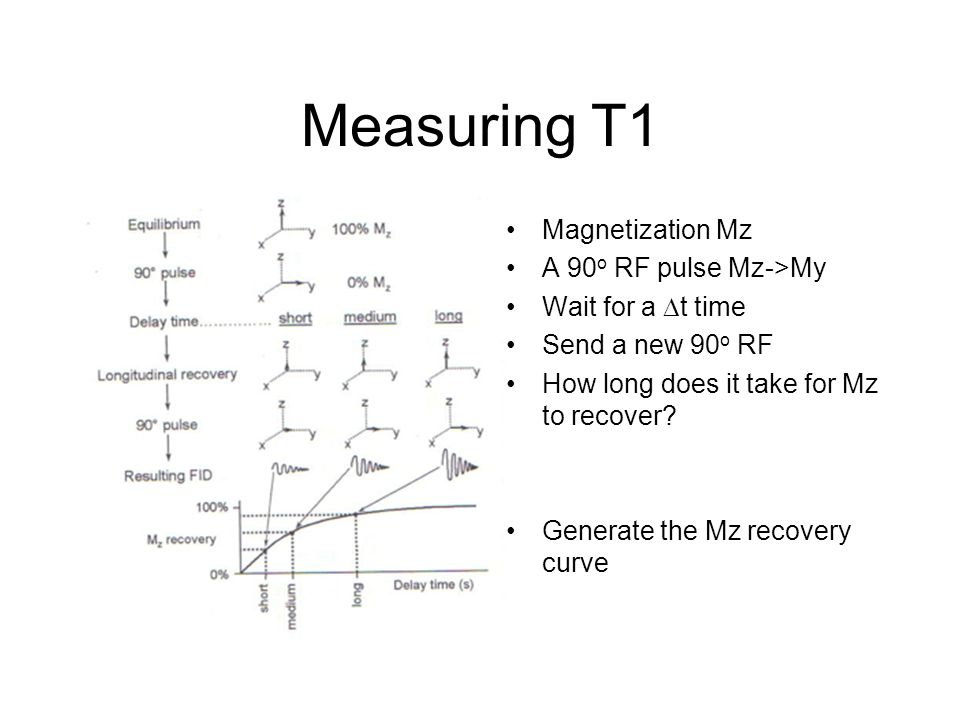 Measuring T1 Magnetization Mz A 90 o RF pulse Mz->My Wait for a  t time Send a new 90 o RF How long does it take for Mz to recover? Generate the Mz r