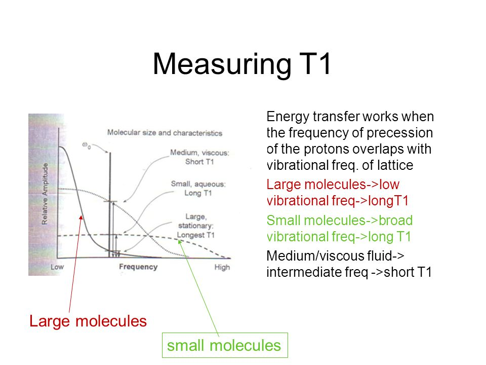 Measuring T1 Energy transfer works when the frequency of precession of the protons overlaps with vibrational freq. of lattice Large molecules->low vib