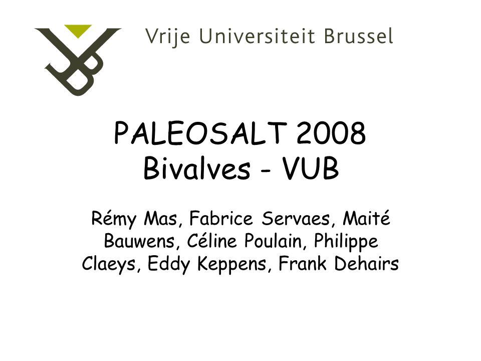 PALEOSALT 2008 Bivalves - VUB Rémy Mas, Fabrice Servaes, Maité Bauwens, Céline Poulain, Philippe Claeys, Eddy Keppens, Frank Dehairs