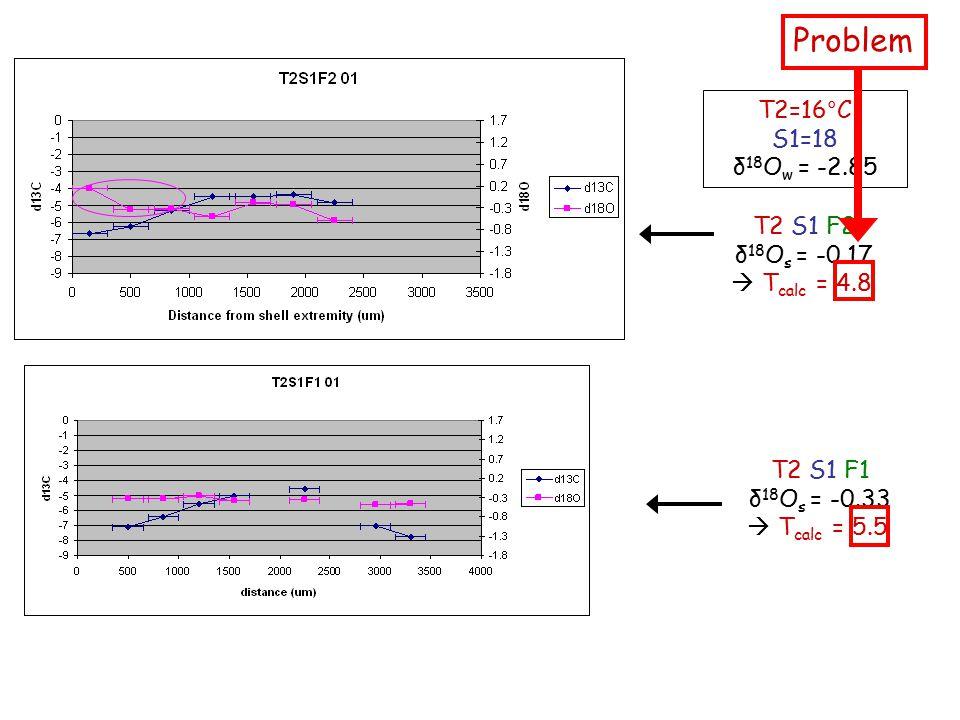 T2 S1 F2 δ 18 O s = -0.17  T calc = 4.8 T2=16°C S1=18 δ 18 O w = -2.85 Problem T2 S1 F1 δ 18 O s = -0.33  T calc = 5.5
