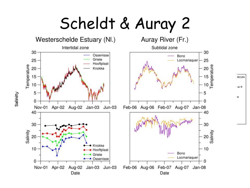 Scheldt & Auray 2
