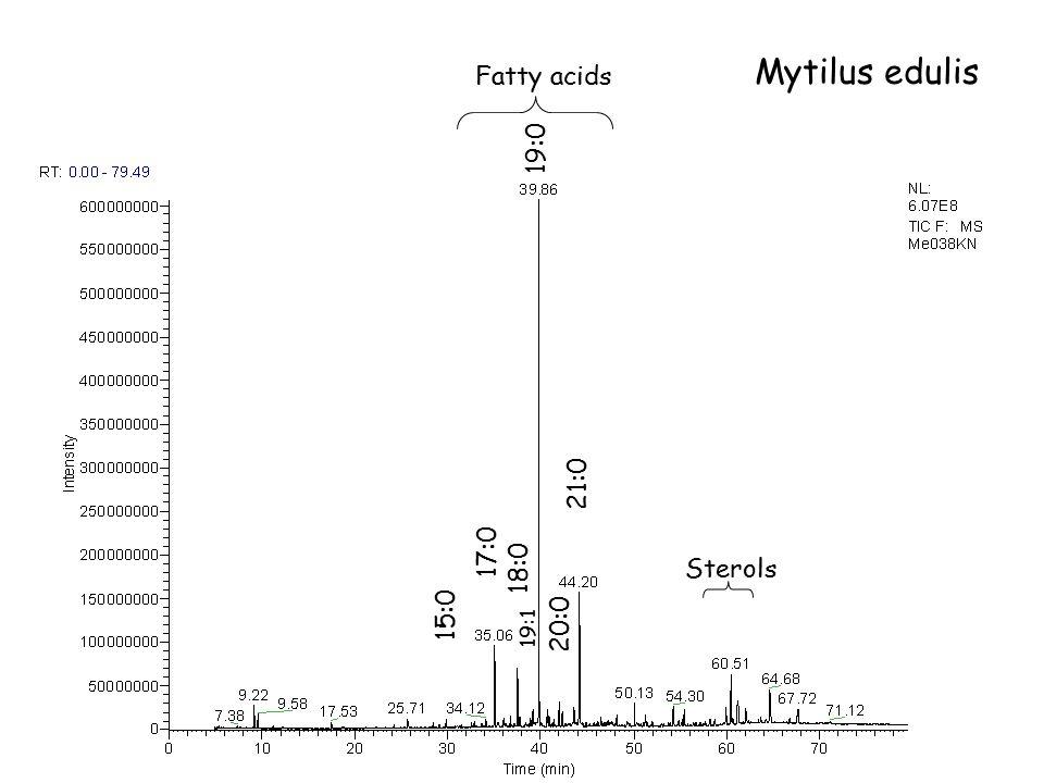 Fatty acids Sterols Me 038 KN 17:0 18:0 19:0 20:0 21:0 15:0 19:1 Mytilus edulis