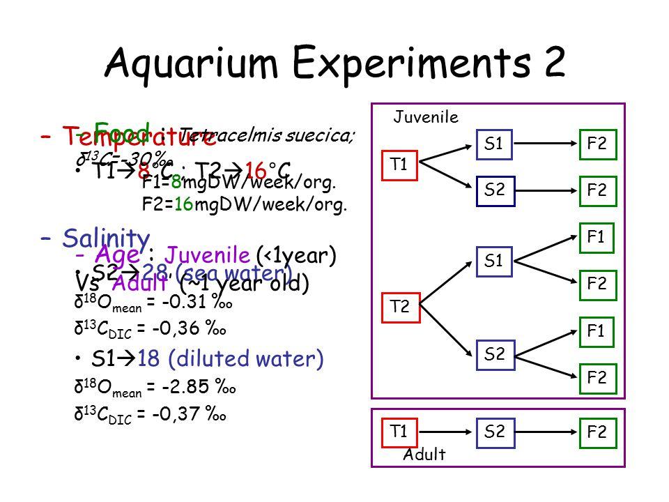 T1 T2 S1 S2 S1 S2 F2 F1 F2 F1 F2 T1 S2 F2 Adult Juvenile Aquarium Experiments 2 –Temperature T1  8°C ; T2  16°C –Salinity S2  28 (sea water) δ 18 O mean = -0.31 ‰ δ 13 C DIC = -0,36 ‰ S1  18 (diluted water) δ 18 O mean = -2.85 ‰ δ 13 C DIC = -0,37 ‰ - Food : Tetracelmis suecica; δ 13 C=-30‰ F1=8mgDW/week/org.