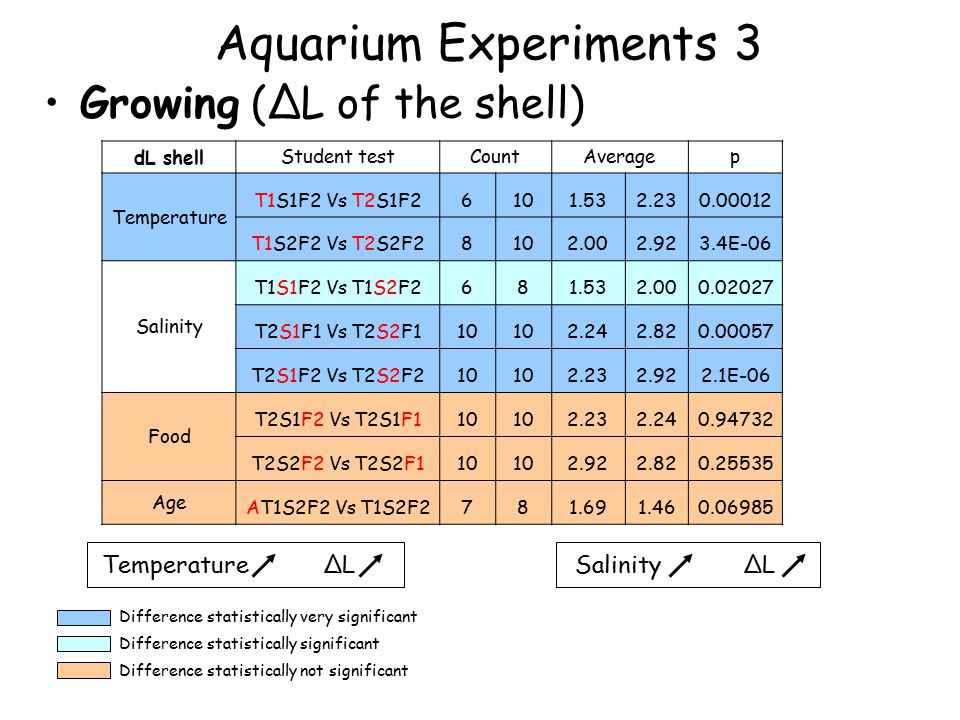 Aquarium Experiments 3 Growing (∆L of the shell) Difference statistically very significant Difference statistically significant Difference statistically not significant dL shell Student testCountAveragep Temperature T1S1F2 Vs T2S1F26101.532.230.00012 T1S2F2 Vs T2S2F28102.002.923.4E-06 Salinity T1S1F2 Vs T1S2F2681.532.000.02027 T2S1F1 Vs T2S2F110 2.242.820.00057 T2S1F2 Vs T2S2F210 2.232.922.1E-06 Food T2S1F2 Vs T2S1F110 2.232.240.94732 T2S2F2 Vs T2S2F110 2.922.820.25535 Age AT1S2F2 Vs T1S2F2781.691.460.06985 Temperature ∆LSalinity ∆L
