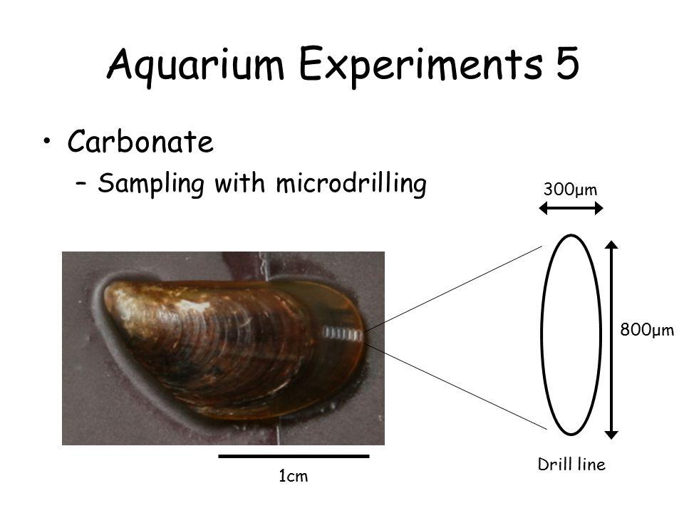 Aquarium Experiments 5 Carbonate –Sampling with microdrilling 1cm 300μm 800μm Drill line