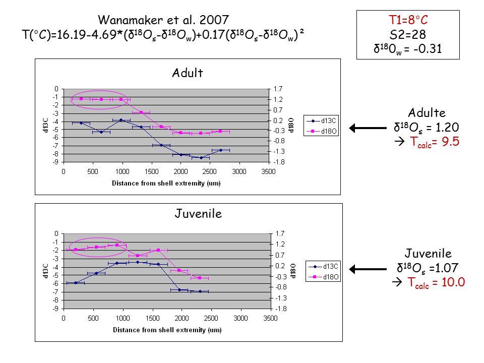 Adulte s δ 18 O s = 1.20  T calc = 9.5 Juvenile δ 18 O s =1.07  T calc = 10.0 T1=8°C S2=28 δ 18 0 w = -0.31 Wanamaker et al. 2007 T(°C)=16.19-4.69*(