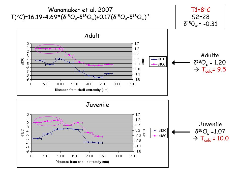 Adulte s δ 18 O s = 1.20  T calc = 9.5 Juvenile δ 18 O s =1.07  T calc = 10.0 T1=8°C S2=28 δ 18 0 w = -0.31 Wanamaker et al.