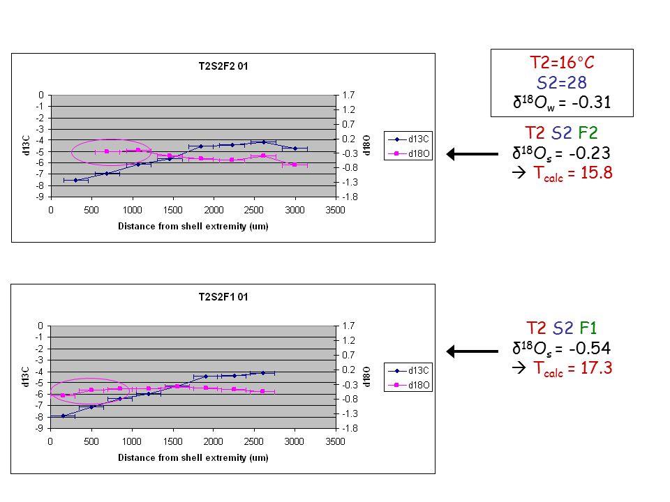 T2 S2 F2 δ 18 O s = -0.23  T calc = 15.8 T2 S2 F1 δ 18 O s = -0.54  T calc = 17.3 T2=16°C S2=28 δ 18 O w = -0.31