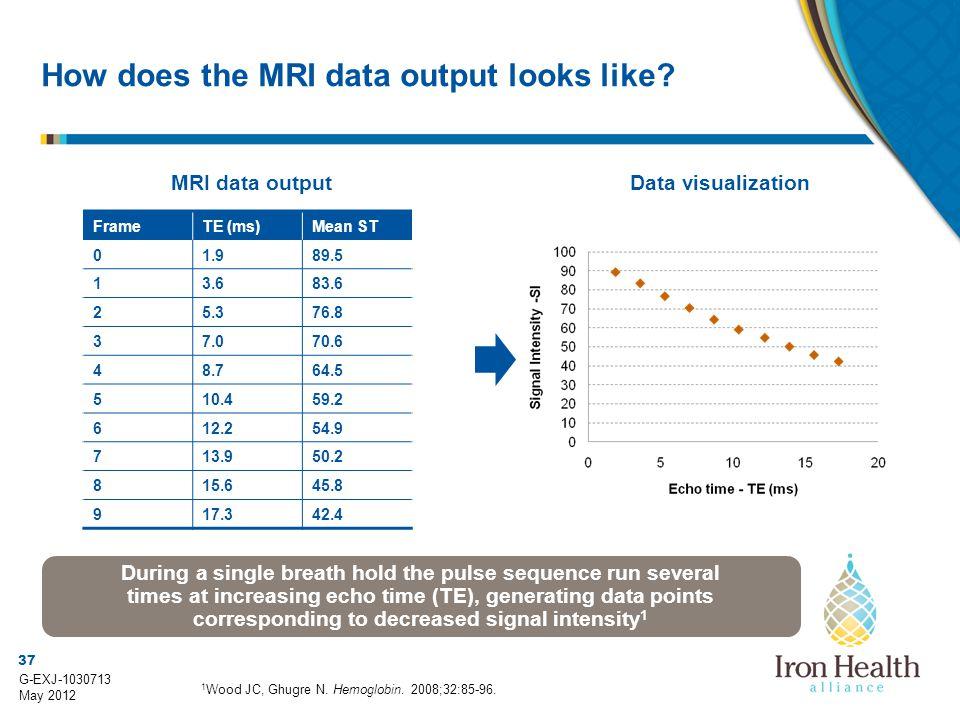 37 G-EXJ-1030713 May 2012 How does the MRI data output looks like? Data visualizationMRI data output 1 Wood JC, Ghugre N. Hemoglobin. 2008;32:85-96. D