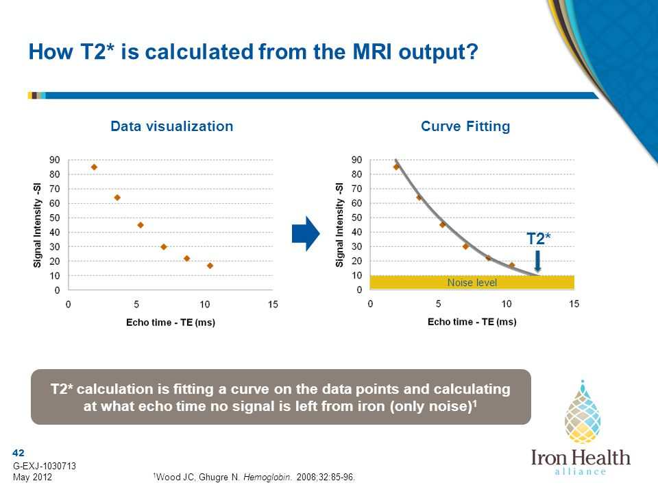 42 G-EXJ-1030713 May 2012 How T2* is calculated from the MRI output? Data visualization 1 Wood JC, Ghugre N. Hemoglobin. 2008;32:85-96. Curve Fitting