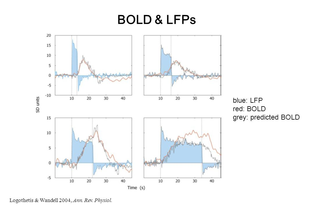 BOLD & LFPs Logothetis & Wandell 2004, Ann. Rev. Physiol. blue: LFP red: BOLD grey: predicted BOLD