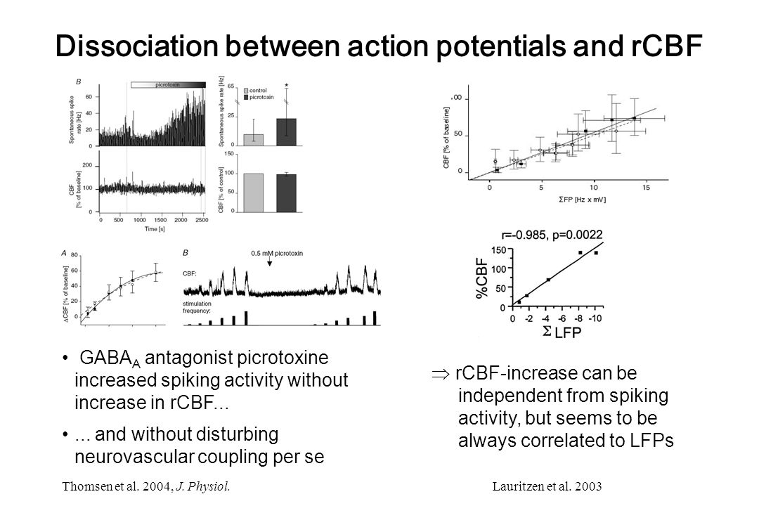 Thomsen et al. 2004, J. Physiol.  rCBF-increase can be independent from spiking activity, but seems to be always correlated to LFPs GABA A antagonist