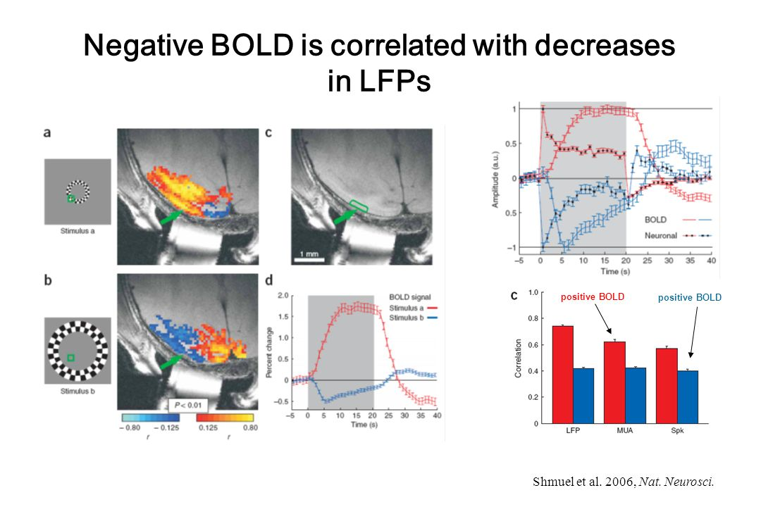 Shmuel et al. 2006, Nat. Neurosci. Negative BOLD is correlated with decreases in LFPs positive BOLD