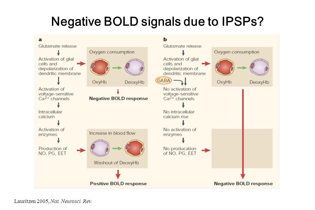 Negative BOLD signals due to IPSPs? Lauritzen 2005, Nat. Neurosci. Rev.