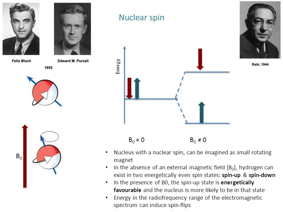 Nuclear spin Nucleus with a nuclear spin, can be imagined as small rotating magnet In the absence of an external magnetic field (B 0 ), hydrogen can e