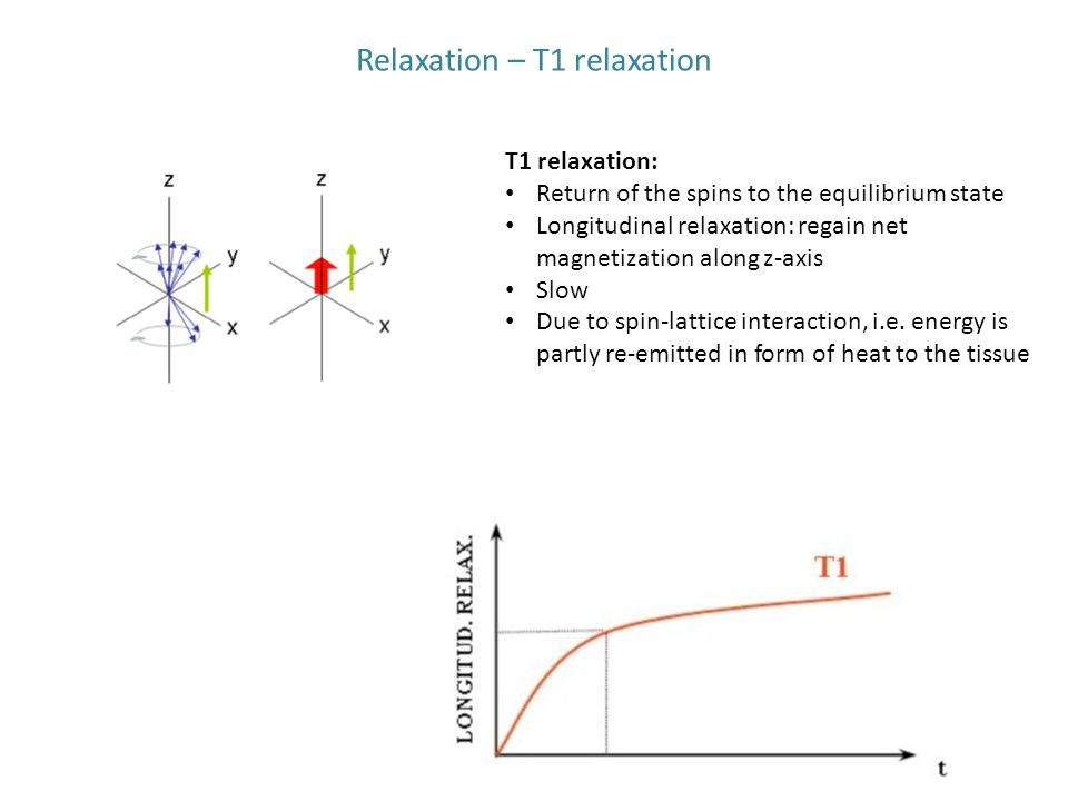 Relaxation – T1 relaxation T1 relaxation: Return of the spins to the equilibrium state Longitudinal relaxation: regain net magnetization along z-axis