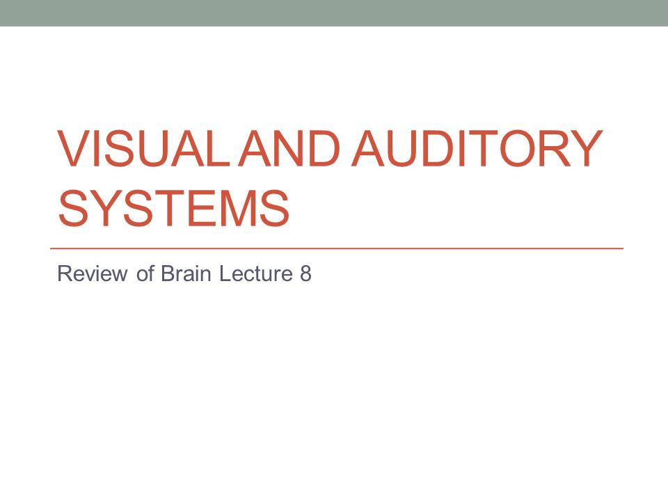 VISUAL AND AUDITORY SYSTEMS Review of Brain Lecture 8